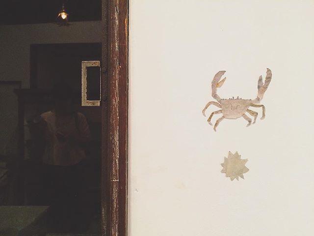 蟹と星(ウニ)