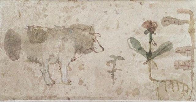 『wolf & plant』