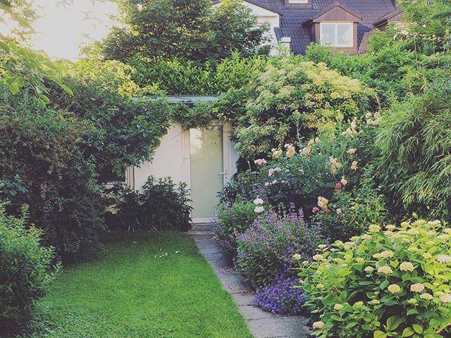 今日も Sのお庭を 拝見。晴れていて 気持ち良。