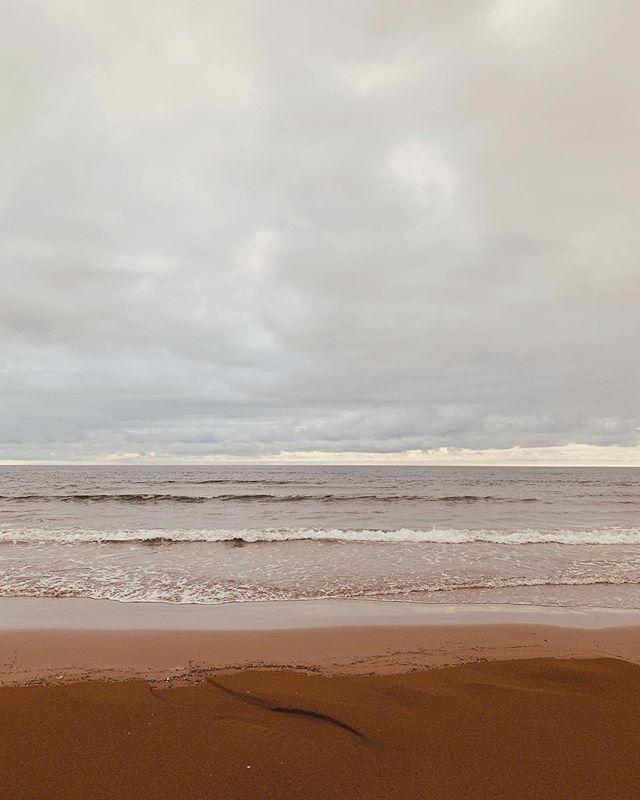 秋の海。久しぶりの水平線。